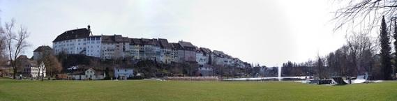 Wiler Altstadt und der Stadtweier aus Sicht der Parkanlage
