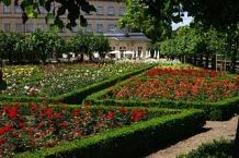 Bamberg, Neue Residenz, Rosengarten