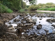 Ponor of the Danube sink, near Immendingen