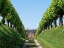 Blick durch die historische Allee auf Schloss Bothmer