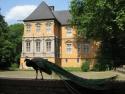 Innenhof Schloss Rheydt