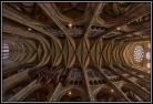Cathédrale Notre-Dame de Chartres. Voûte de la nef.