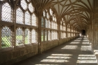 Wells Cathedral, cloister