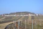 Wildendürnbach, Kellergasse ʺGalgenbergʺ