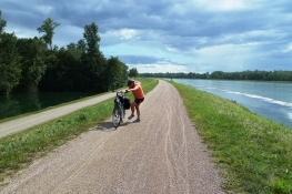 Am Rhein bei Burkheim