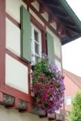 Burkheim, Gebäudedetail