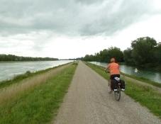 Rheinradweg vor Weisweil