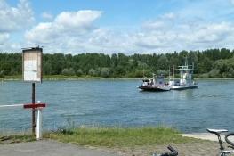 Rheinfähre bei Neuburg