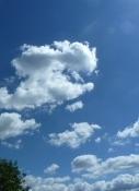Wetter vom Feinsten