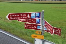 Radweg-Wegweiser