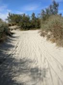 Sand macht das radeln unmöglich - schieben