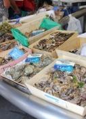 Le Grau-du-Roi, Meeresfrüchte