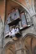 Bamberg, Orgel im Dom
