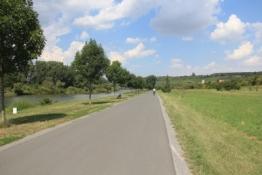 Mainradweg zwischen Ochsenfurt und Sommerhausen