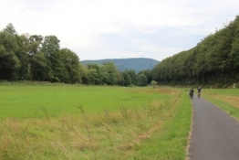 Mainradweg bei Neuendorf