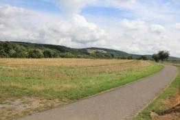 Main-Radweg hinter Wörth