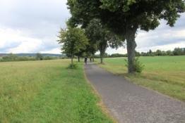 Main-Radweg bei Mainflingen