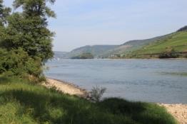 Rheintal bei Trechtingshausen