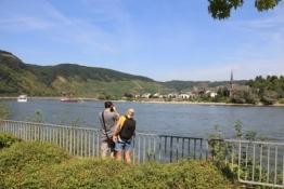Rhein bei Boppard