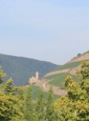 Burg Ehrenfels bei Bingen