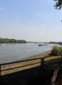 Rheinufer in Köln-Niehl mit Blick Richtung Stammheim