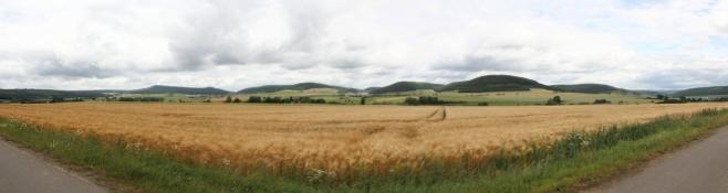 Landschaft zwischen Hermannsfeld und Sülzfeld