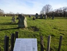 Jernaldergravpladsen Stainabjär/The iron age burial site of Stainabjaer