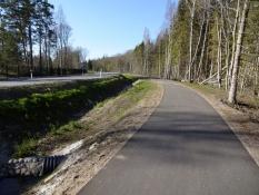 Virkelig lækre cykelstier hele vejen ind til Tallinn/Splendid bike paths all the way into Tallinn