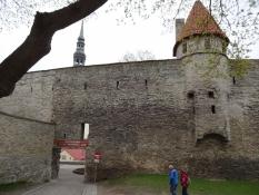 Den middelalderlige bymur rundt om domkirkehøjen Toompea/The medieval city wall around Toompea