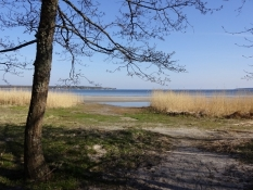 Stranden ud for Lepispea Camping/The beach next to Lepispea Camping