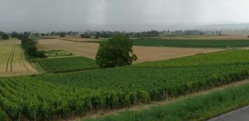 Saint-Gengoux-le-National nach Taizé