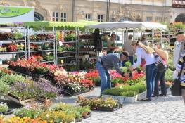Eisenach, Markt