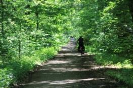 Auf Waldwegen vor Gotha