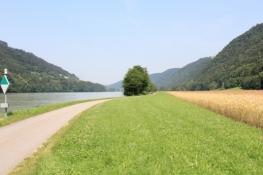 Am Donauradweg