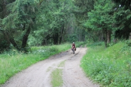 Schlechter Waldweg im ehemaligen Grenzstreifen