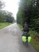 Asfaltvej i én af de store skove syd for München/Tarmac road in a big forest south of Munich