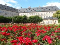 Den nye residensʹ rosenhave i fuldt flor/The new residenceʹs rose garden in full bloom