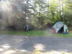 Teltpladsen på campingpladsen i Nürnberg/The tent area at the Nuremberg camp site