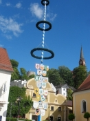 Majstage på torvet i Bad Abbach/May pole on the market square of Bad Abbach