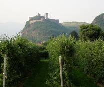 Bei Bozen, Schloss Sigmundskron