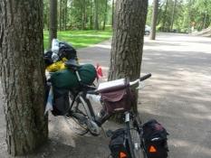 Naturcykelstativ/Natural bike rack