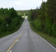 Masser af plads på vejen igennem skovene/Lots of space on the road through the woods