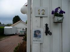 Indkørslen til Ketokatu 12/The driveway of 12, Ketokatu
