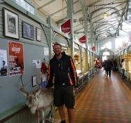 Indenfor i markedshallen med et rensdyr/Inside the market hall with a reindeer