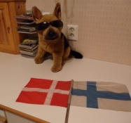 Det flag sad på min cykel. Her i Markkus værelse/This flag I had on my bike. Here in Markkuʹs room