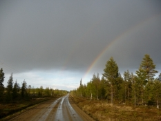 En flot regnbue over skoven/A pretty rainbow above the forest