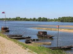 Loire bei Le Thoureil