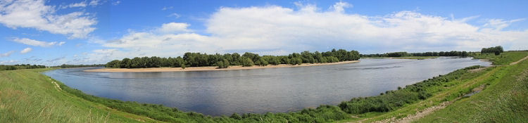 Loire bei Sandillon