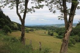 Talblick bei Montagny-sur-Grosne