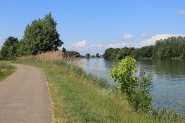 Saône bei Saint-Symphorien-sur-Saône